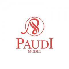 PAUDI